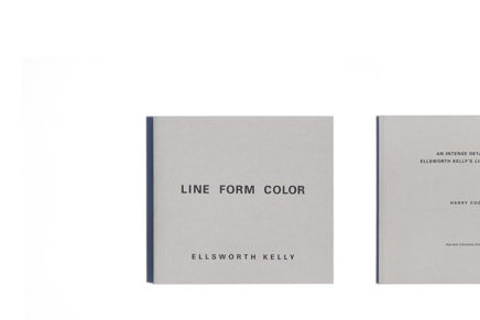 Line Form Color Ellsworth Kelly French Edition