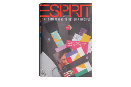 ESPRIT The Comprehensive Design Principle