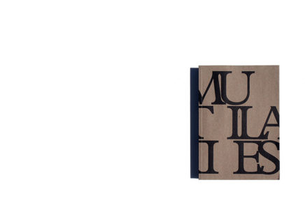 Mutilaties : metamorfoze twintig jaar